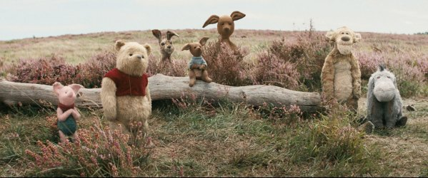The Hundred Acre Wood Gang